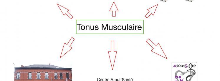 coverTonus Musculaire